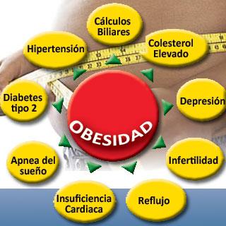 Circulo de la obesidad